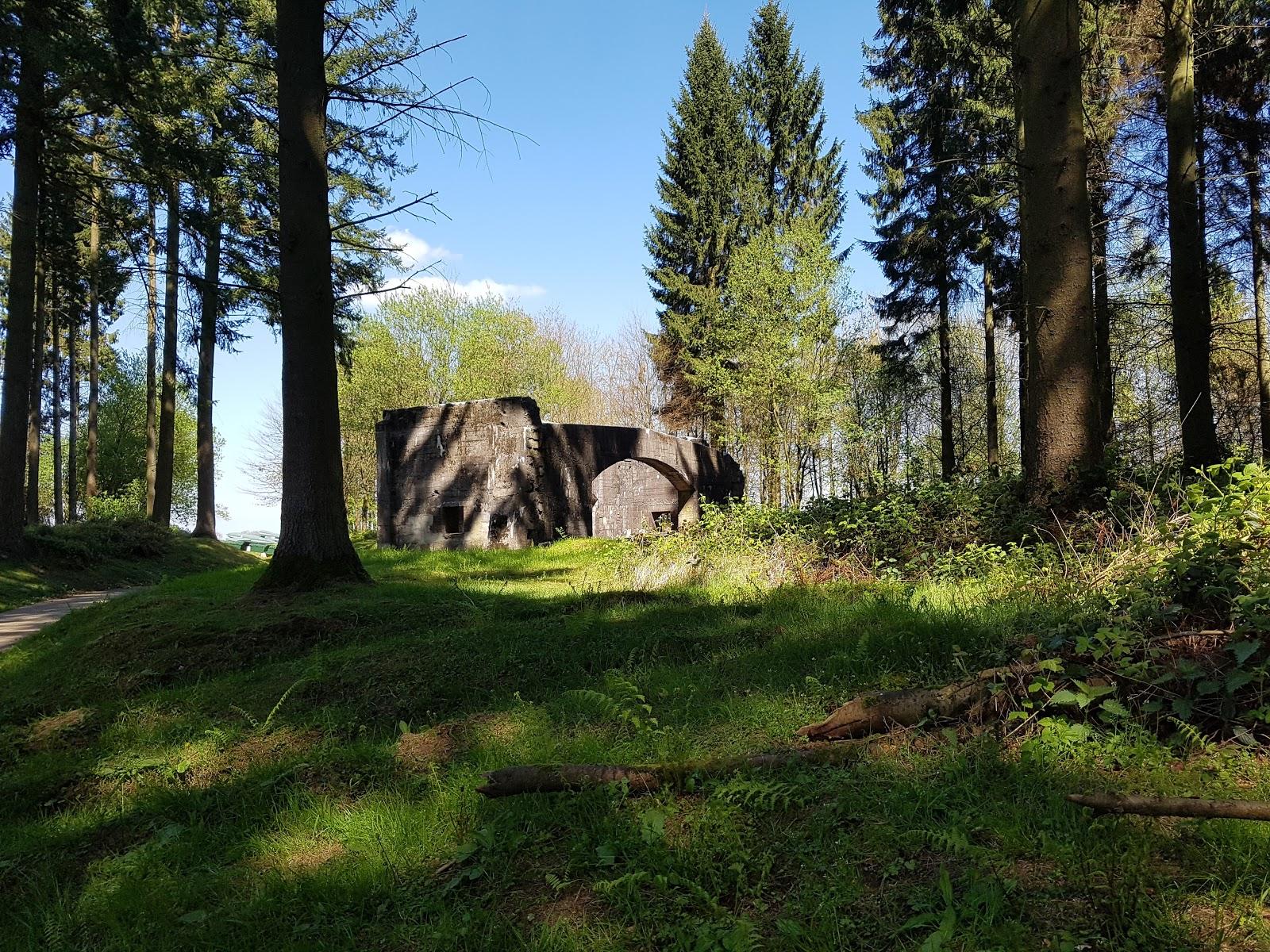 Photo des Vestiges de la seconde guerre mondiale dans la forêt d'Eawy