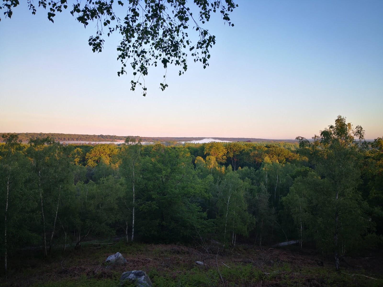 Photo de la forêt d'Ermenonville