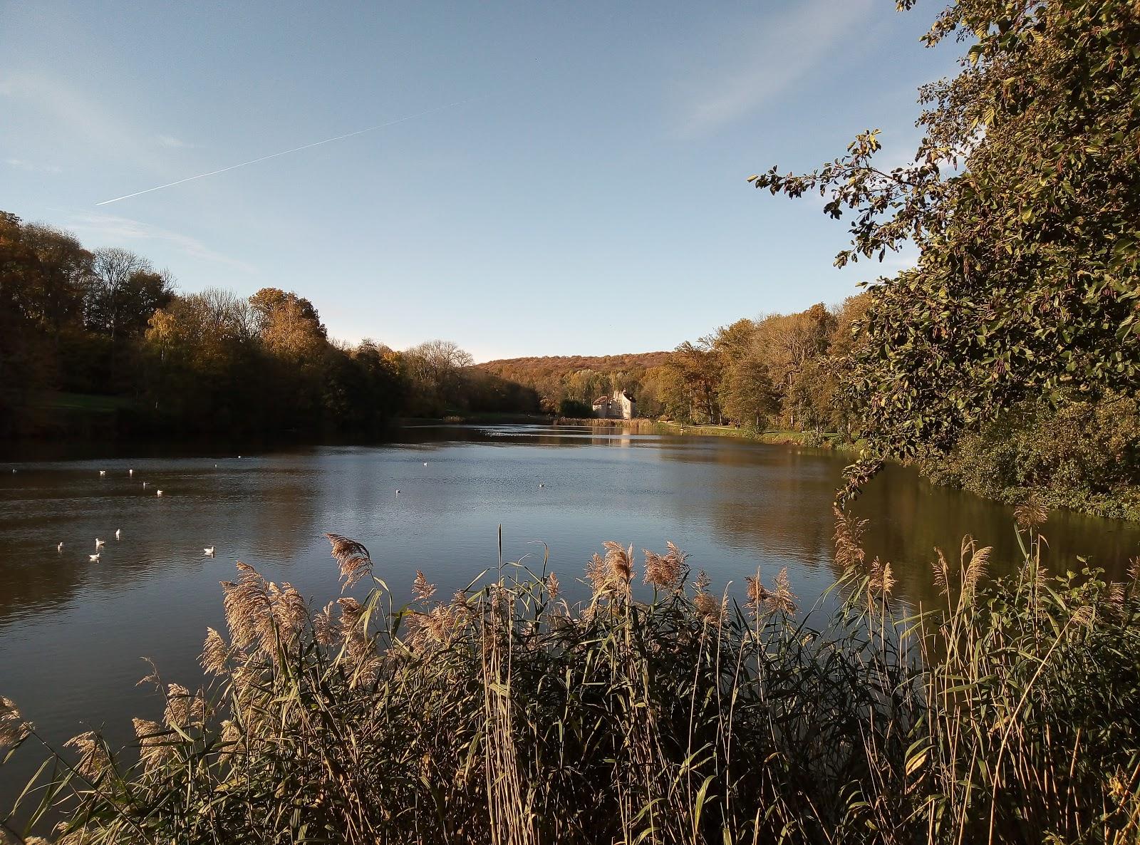 Ruisseau du petit moulin dans la forêt de Montmorency