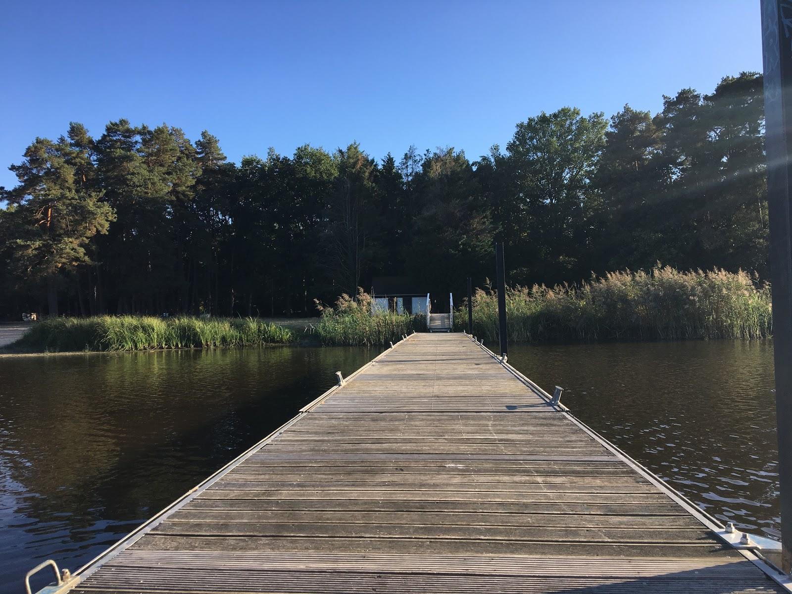 Ponton sur l'étang de la Vallée