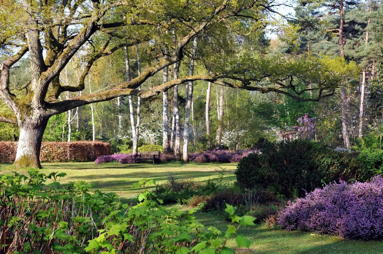 Arboretum des grandes bruyères à Orléans