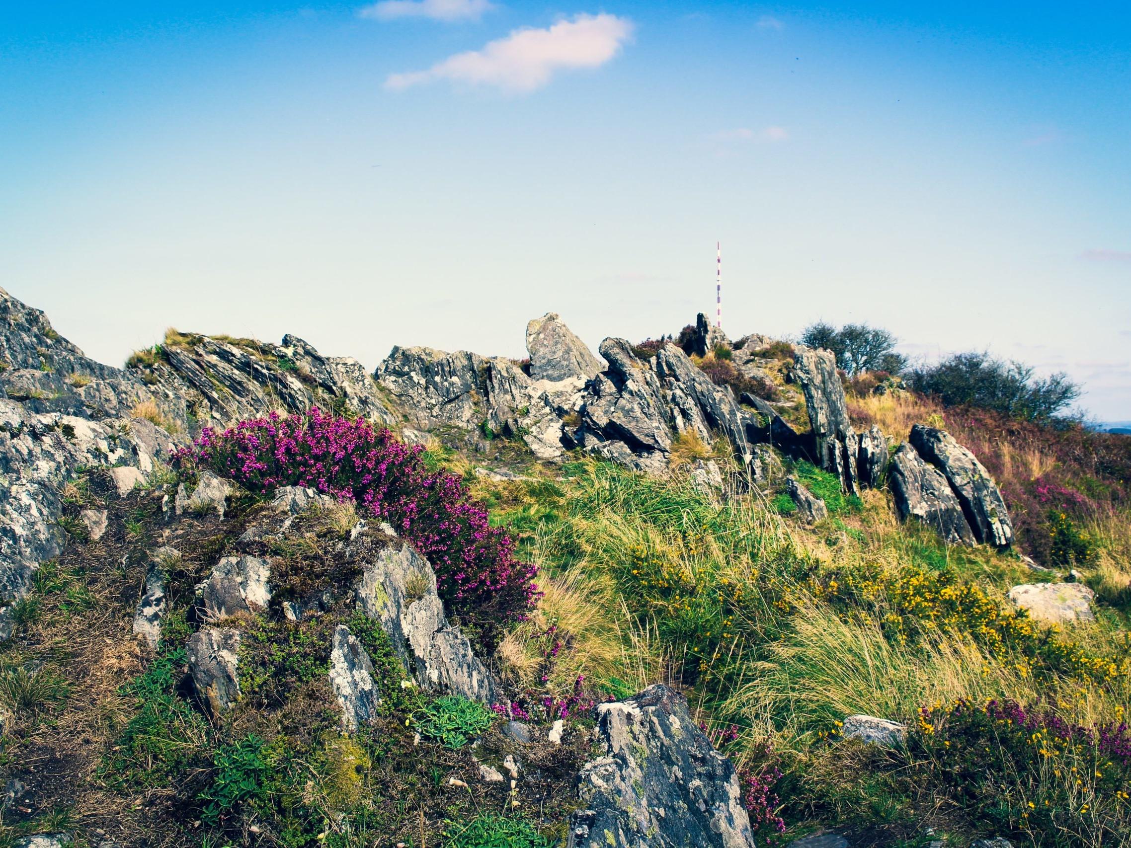 Monts d'Arrée - Bretagne